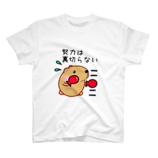 きゃぴばら【努力は裏切らない】 T-shirts