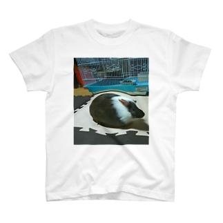 モルモットでぶ T-shirts