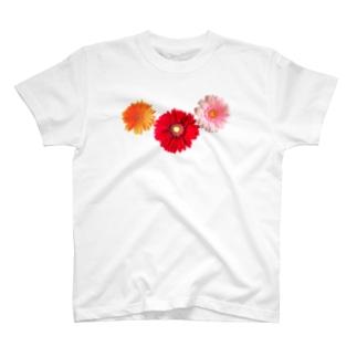 ガーベラ・もり T-Shirt