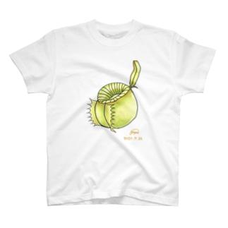 食虫植物 Nepenthesシリーズ N.ampullaria T-shirts