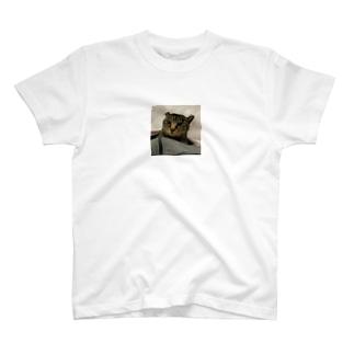 世界一可愛い猫のグッズ T-shirts