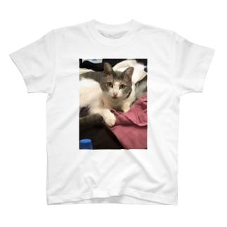 ちるたん T-shirts