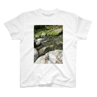 夏Tシャツ T-shirts