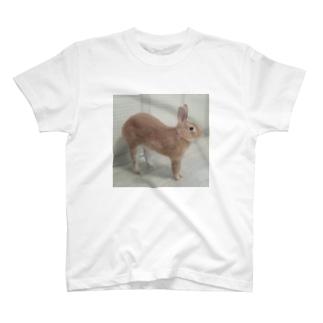 上に伸びるうさぎ T-shirts