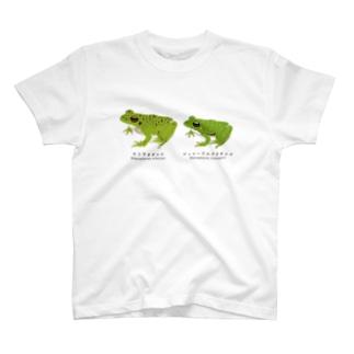 アオガエル2種 T-shirts