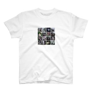 水をたたえる T-shirts