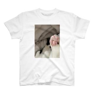 だいごろ(肉球) T-shirts