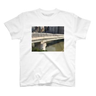 桜川 T-shirts