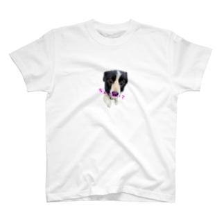 ボーダーコリーはおねだり上手 T-shirts