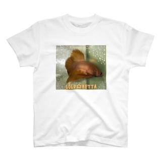 ベタGOLD☆ T-shirts