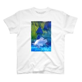 ダンボベタ T-shirts
