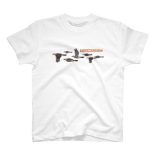 みんなで渡ればこわくない(ヒヨドリ) T-shirts