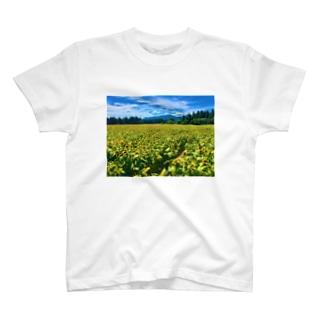 津南の向日葵畑 T-shirts