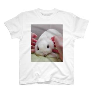 フカフカ毛玉ちゃん T-shirts