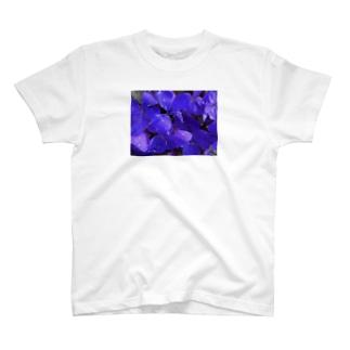 オサカナ百貨店の撮った写真を貼っただけ1 知らない花 T-shirts