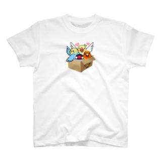 拾ってくださいインコ【まめるりはことり】 T-shirts