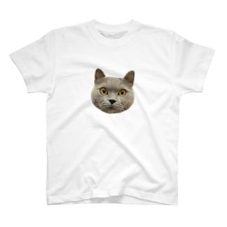 AGU T-shirts