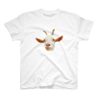 ヤギ T-shirts
