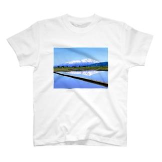 YAMA T-shirts