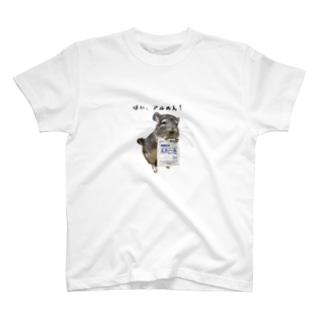 アル綿をくれるぴーちゃん T-shirts