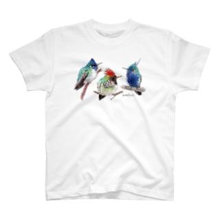 Tシャツ ハチドリ T-shirts