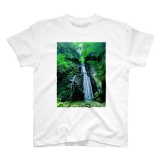閑定の滝 T-shirts