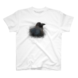 ハシブトガラス幼鳥(★寄付) T-shirts