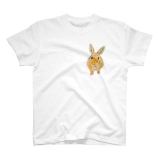 せまりくるうさぎ(むぎ) T-shirts
