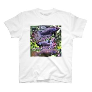 ベタ♡マハチャイグレー T-shirts