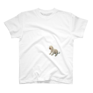 dododo.,doushiyou T-shirts