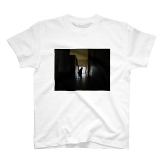 かいだんねこ T-shirts