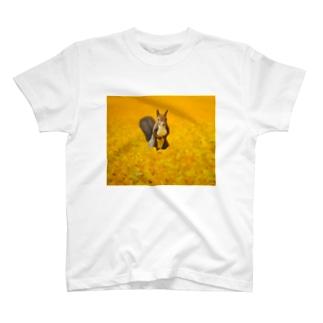 出逢い T-shirts
