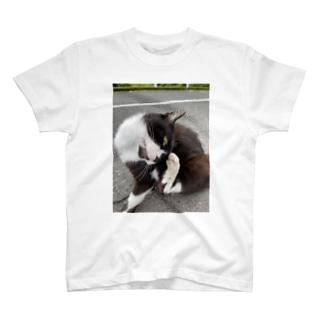 ねこのゴンちゃん T-shirts
