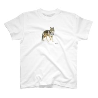 コヨーテ T-shirts
