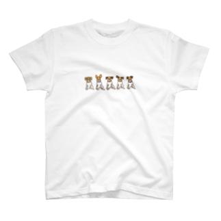 ジャックラッセルテリアのトトwithブラザーズ T-shirts