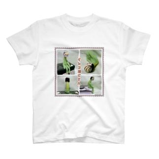 元祖インコおじさん T-shirts