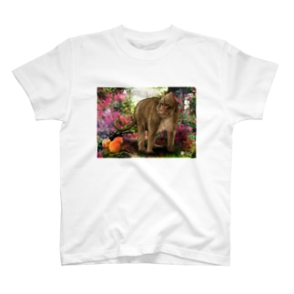 蟠桃と鶏冠猿 T-shirts