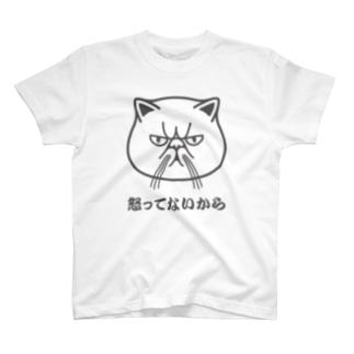 エキゾチックショートヘア「怒ってないから」 T-shirts