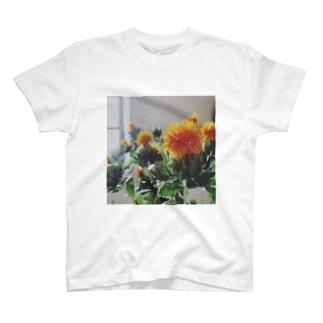 ビッグシルエットTシャツ ベニバナ T-shirts