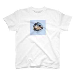 ねこのひらき T-shirts
