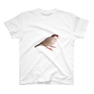 あくびする千代丸 T-shirts