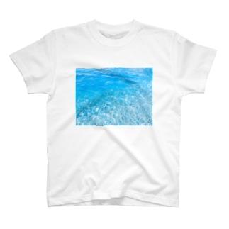 日本海 T-shirts