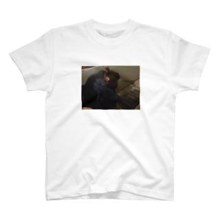 ゆいたすめるとだうん T-shirts