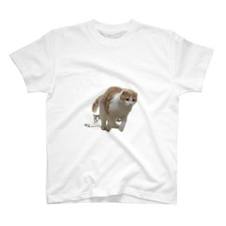 とろおにく T-shirts