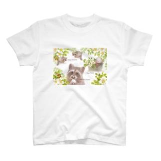 手をアライグマ T-shirts