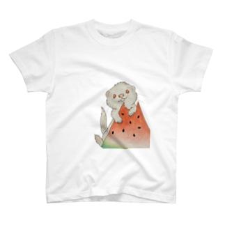gucco(ぐっこ)のスイカとフェレット(アルビノ) T-Shirt