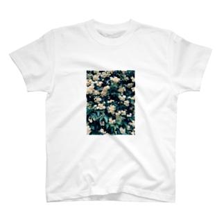 モッコウバラ T-shirts