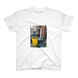 岡山のねこ T-shirts