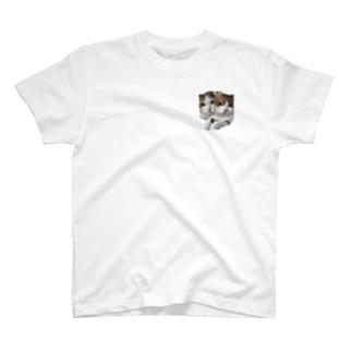 くるみとしるくの三毛ちゃん姉妹 T-shirts
