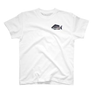 アジアコショウダイ T-shirts
